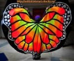 Bellydance wings with 3D effect